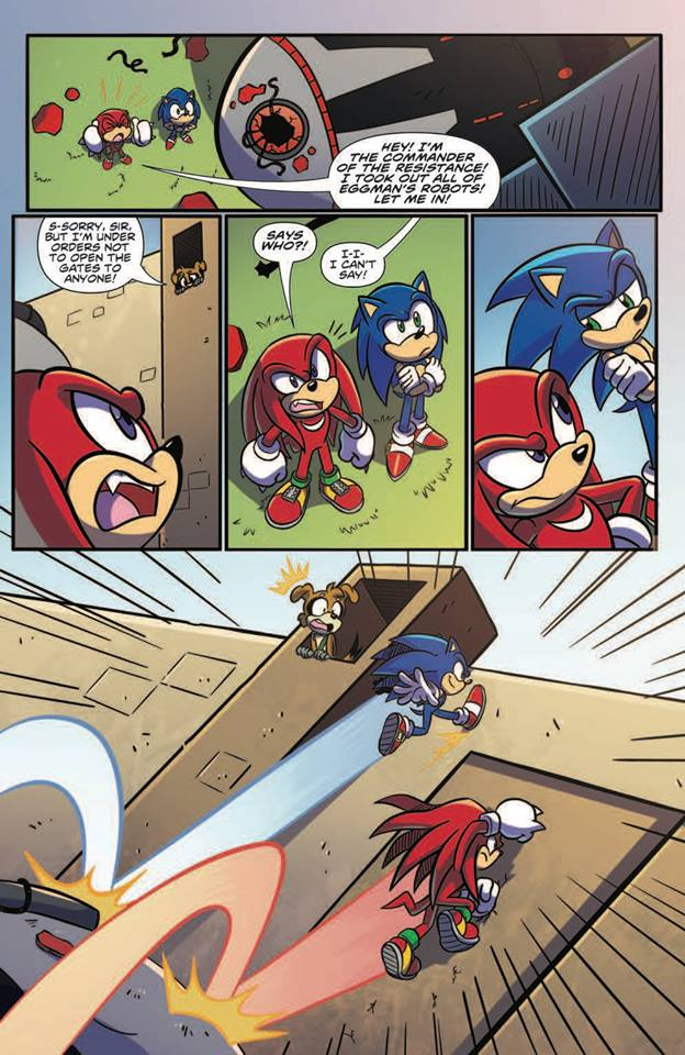 Sonic the hedgehog IDW publishing issue 3 ian flynn knuckles the echidna jennifer hernandez rough and tumble page