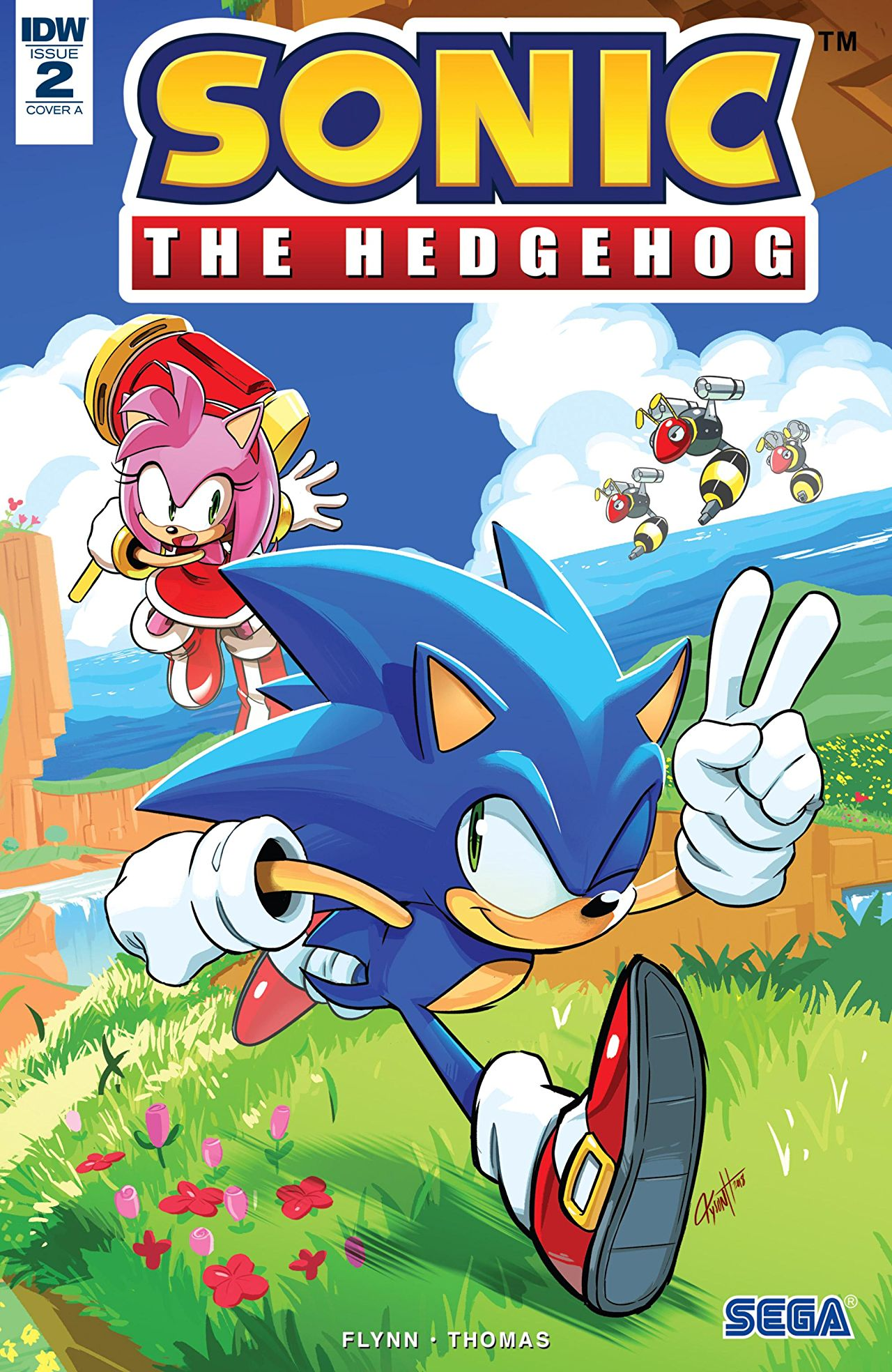 Sonic the hedgehog IDW publishing issue 2 ian flynn amy rose