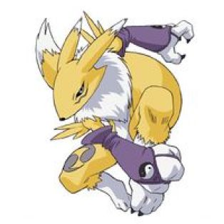 renamon digimon tamers furry furries