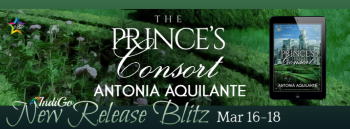 The Princes Consort Banner