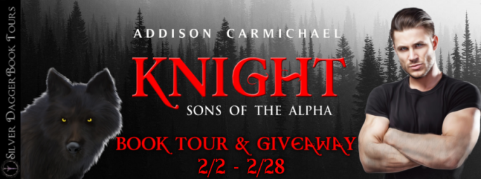 knight sons of the alpha paranormal romance addison carmichael