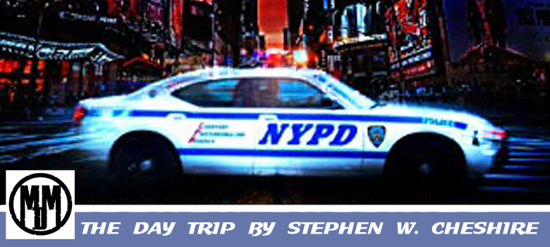 The Day Trip by Stephen W Cheshire Book Review Header