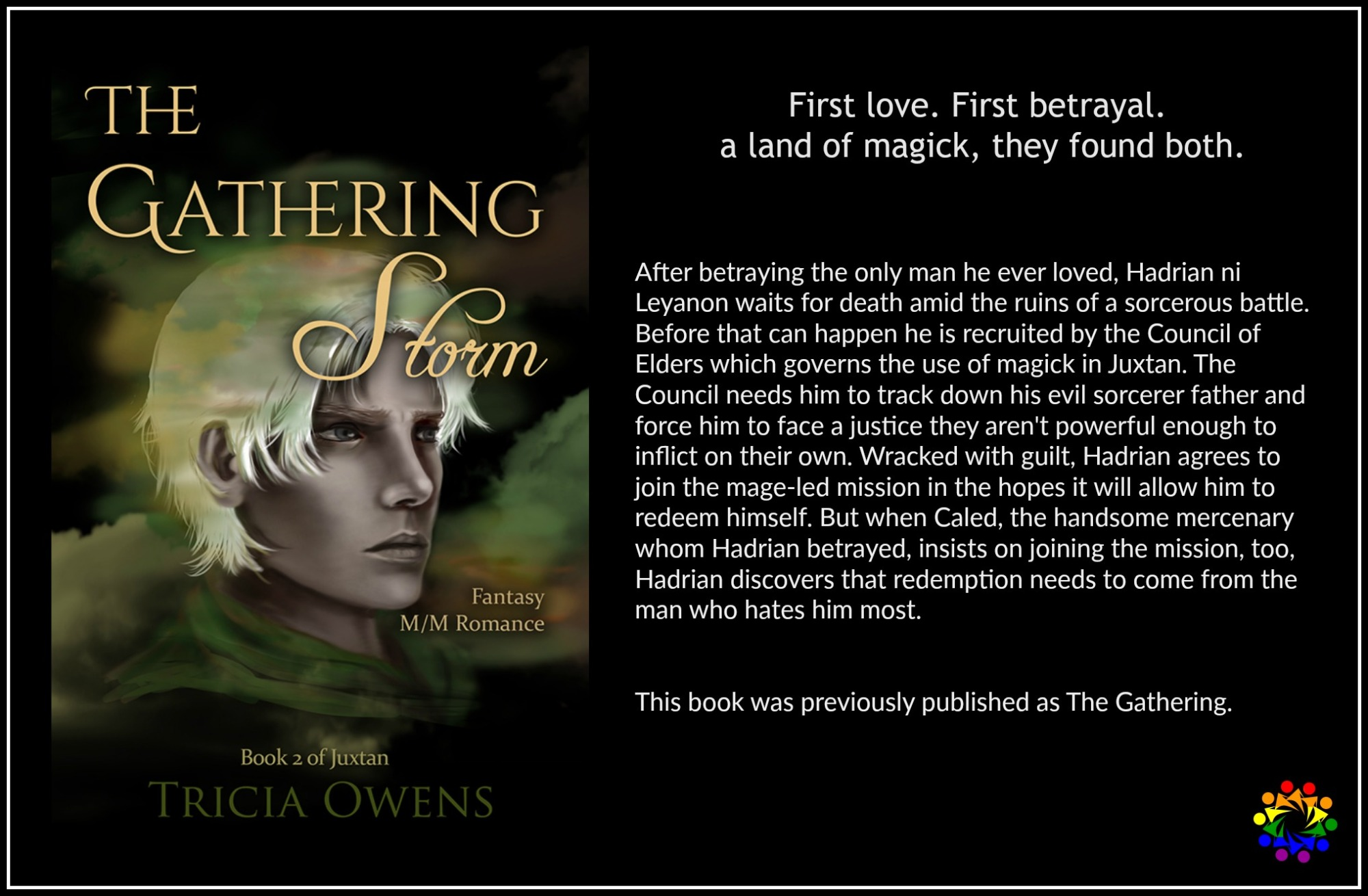 THE GATHERING STORM tricia owens Mm romance fantasy