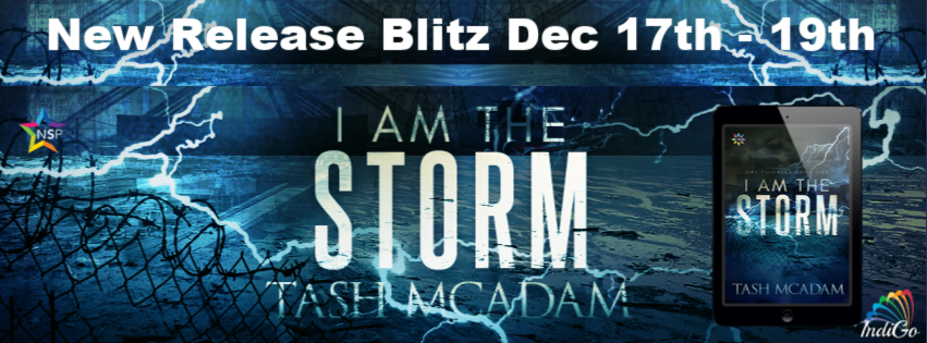 I am the Storm Tash McAdam Lesfic Pansexual Trans Military Sci-Fi