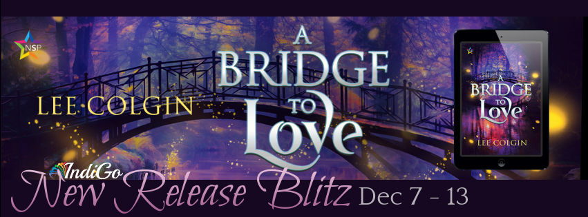 A Bridge to Love Banner