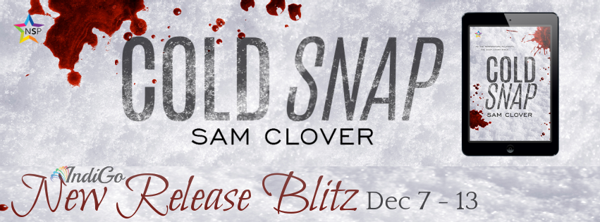 Cold Snap Banner