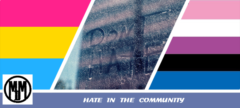 HATE IN THE COMMUNITY HEADER