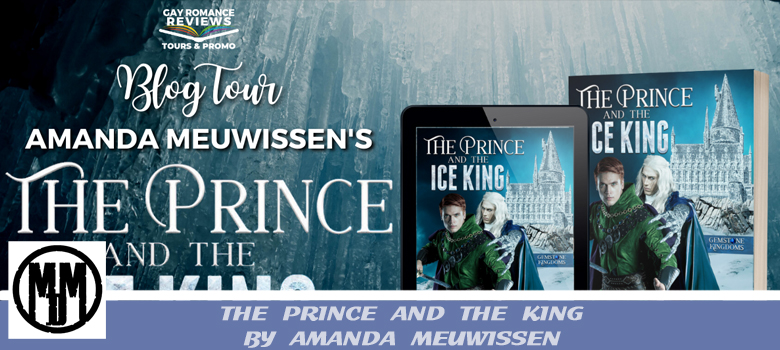 THE PRINCE AND THE KING BY AMANDA MEUWISSEN BOOK SPOTLIGHT HEADER